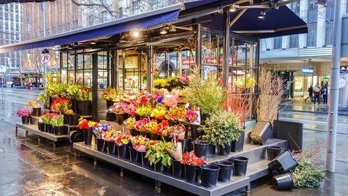 Vous êtes autorisé à acheter des fleurs en ligne à tout moment et partout dans le monde. Il n'y a pas de temps fixe pour acheter des fleurs en ligne